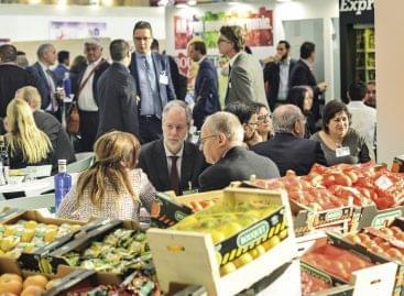 Magazin: Piaci előny? Egyre nehezebb – Fruit Logistica 2019, Berlin