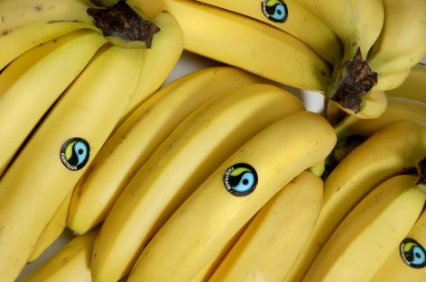 Plus To Use Blockchain To Trace Banana Supply Chain
