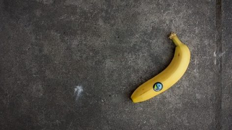 Lidl Belgium To Sell Only Fairtrade-Certified Bananas