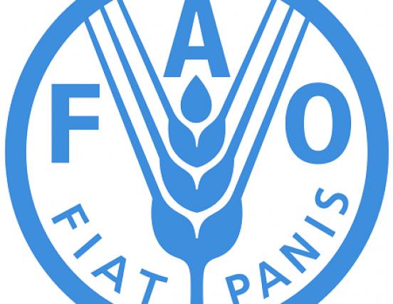 FAO-magyar együttműködés a fenntartható élelmezésért