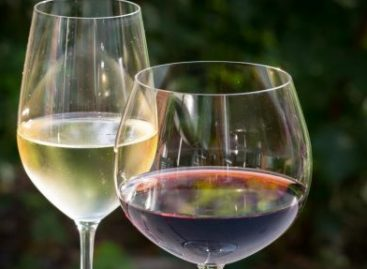 Minister for Agriculture: wines around Sümeg may be awarded a protected designation of origin