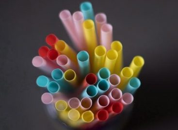 Portuguese Retailers Announce Plastic Reduction Measures
