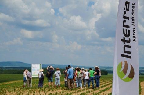 Interra® Farm: intenzív gazdálkodás a környezet megóvásával
