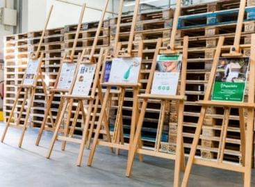 Aldi Nord és Aldi Süd: fenntartható csomagolás hét startuppal