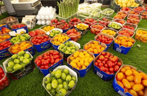 FAO: A mezőgazdaság bővülése alacsonyan tartja az élelmiszerárakat a következő évtizedbe
