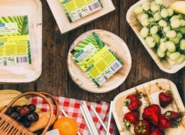 Coop Switzerland Replaces Plastic Tableware With Palm-Leaf Alternative