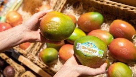 Lézercímkézést vezet be organikus mangóinál a Spar Ausztria