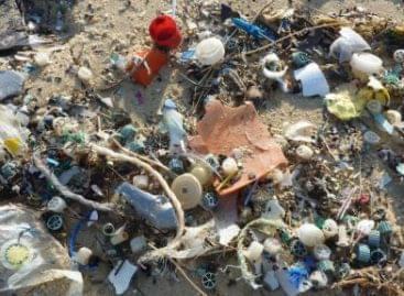 Műanyagból étel: megvan a megoldás az éhezésre? VIDEÓ!