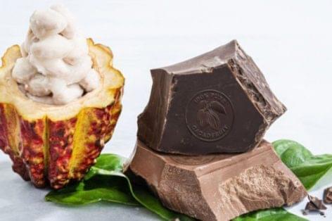 100 százalékban kakaógyümölcsből készül a Barry Callebaut új csokoládéja