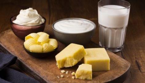 A no-deal brexit eltörölheti Észak-Írország tejiparát