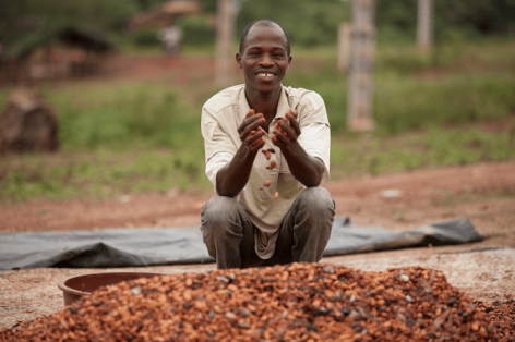 Mars: 3.5 Million Cocoa Plants, more than 270 thousand supported small growers, and  1 billion USD Investment for sustainable cocoa growing