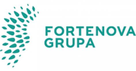 Megvételre kínálja a horvát Fortenova melléküzletágait