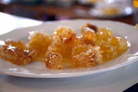 Mézes reggelivel népszerűsítik a mézfogyasztást országszerte több mint 1000 iskolában és óvodában