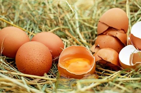 Quality systems and markings in egg production