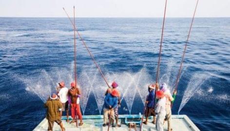 Tíz éve fenntartható a Waitrose saját márkás tonhala