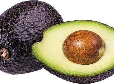 Fruktóz-avokádóburok a hosszabb élettartamért