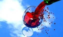Európa Kulturális Fővárosa – Öt kategóriában lehet nevezni a balatoni borok versenyére