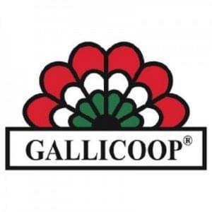 Gallicoop logo