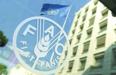 FAO: mélyponton az élelmiszerárak a koronavírus miatt