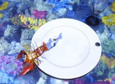 Az Apró Séf most homárt készít – A nap videója