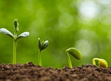 AM: új korszak a mezőgazdasági hulladékfeldolgozásban