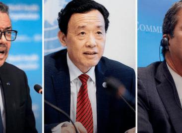 FAO: Mérsékeljük a COVID-19 hatását az élelmiszer-kereskedelemre és -piacokra