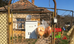 Hungarian Foodbank supporting those in need