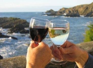 European wine consumption is declining
