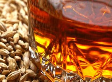 UK scientists breed wheat to boost whisky production