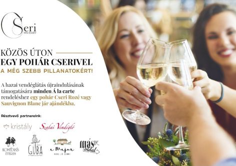 Győr-based campaign to support the resumption of domestic hospitality