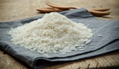Nyolcéves csúcson a vietnámi export rizs ára