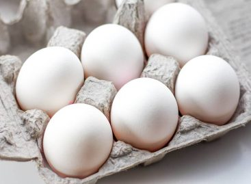 Tesco Re-Introduces White Eggs After More Than 40 Years