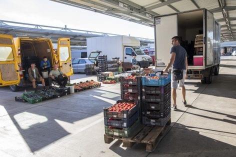 Több mint húszmilliárd forintos beruházássorozat indul a Homokhátságon