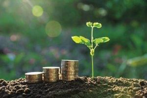 Megbecsüljük a jövőt? - fenntarthatóság