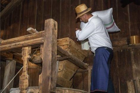 Kétszáz zsák búzát adományoz a Talentis Agro Zrt. a Magyarok kenyere programhoz