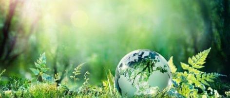 Környezetbarát csomagolás a Normától