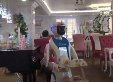 Theresa, a robotpincérnő – A nap videója