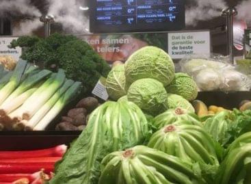 Díjat kapott az EB-től a Contronics az élelmiszerhulladék csökkentéséért
