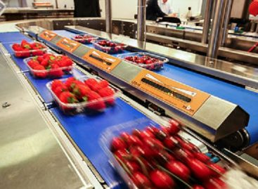 FRUIT LOGISTICA with new date and adapted concept