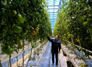 Európa és Közép-Ázsia letette voksát a fenntartható és innovatív mezőgazdaság mellett