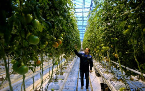 Europe and Central Asia call for more sustainable and innovative agriculture