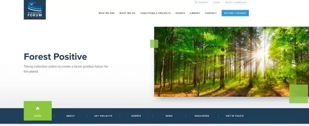 Fenntartható erdő