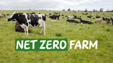 Zéró karbonkibocsájtású tejgazdaságot nyit a Nestlé Dél-Afrikában