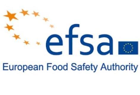 Az Európai Élelmiszerbiztonsági Hatóság szerint emberi fogyasztásra alkalmas a lisztbogár lárvája