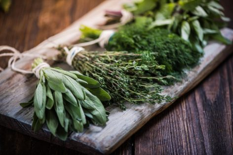 A new training will start for herbalists at the Szent István University