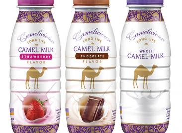 Camelicious tevetej 210 ml, natúr, csokoládés, epres