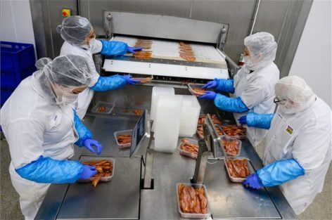 The Tamási-Hús Kft. is increasing the capacity of its bacon factory