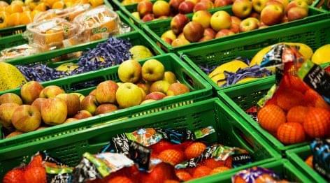Nébih: egyszerűbb lett az élelmiszer-vállalkozások indítása