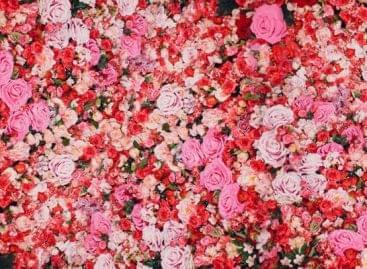 Már virágot is rendelhetünk online