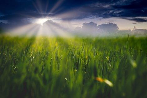 Idén és jövőre majdnem 3 ezer milliárd forint juthat vidékfejlesztésre